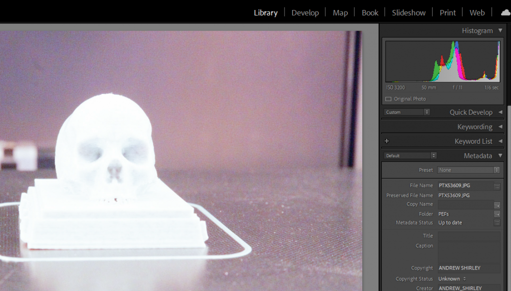 Skull Picture with Blown Highlights