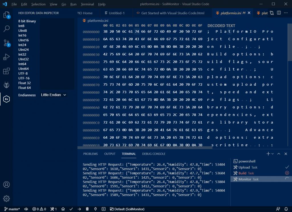 VS Code Hex Editor